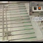 אוטומטי בוטנים פיסטוקים גרעיני חמניות שקדים אגוז קשיו backstick כרית מכונת bagging